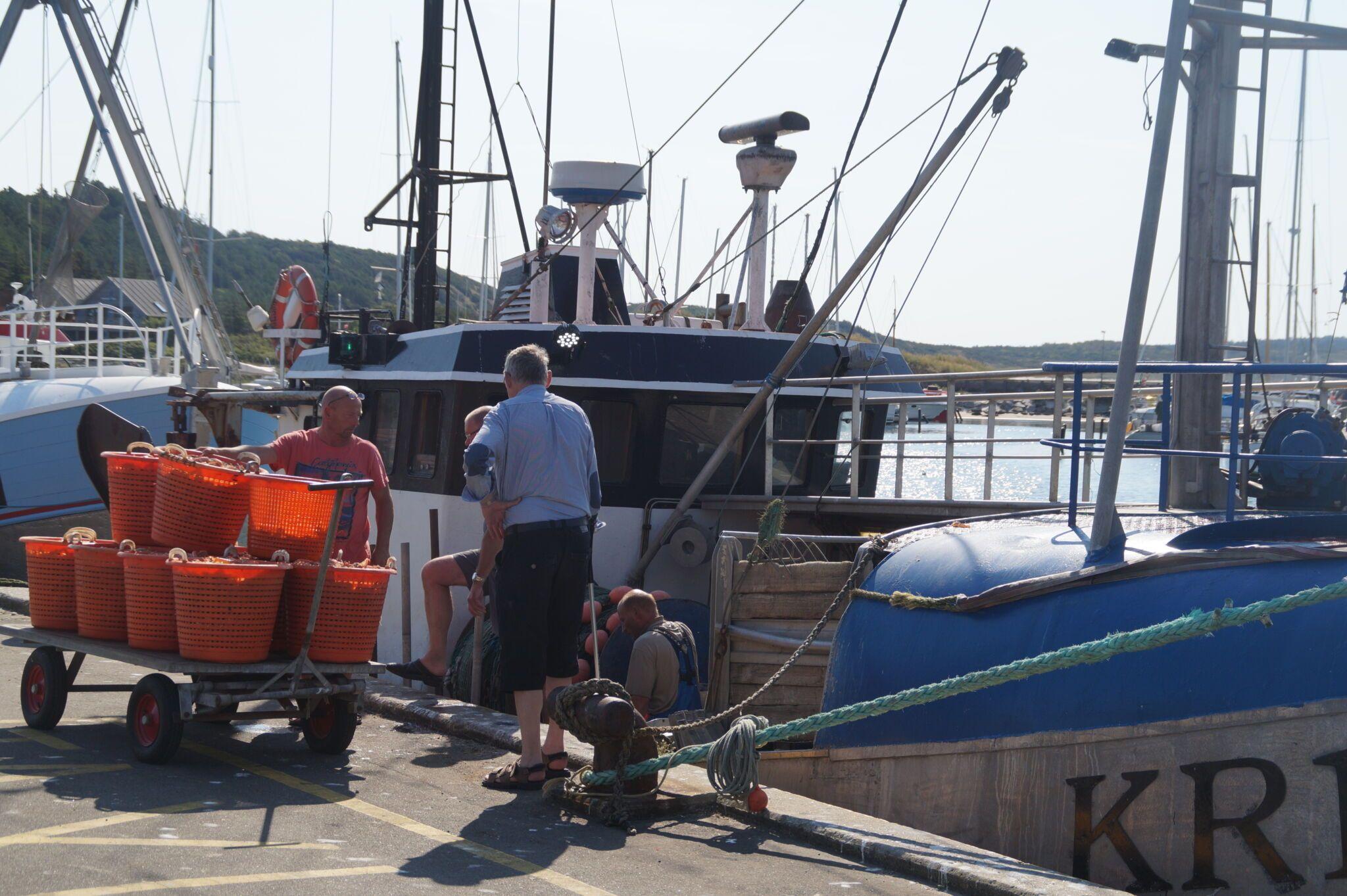 Fiskere snakker med mand