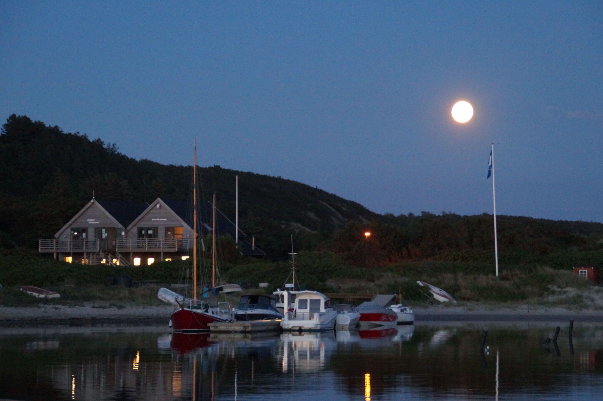 måneskin over anholt havn